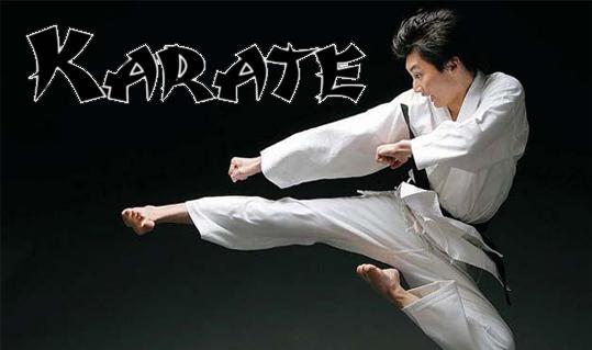 www.karatenomiti.com