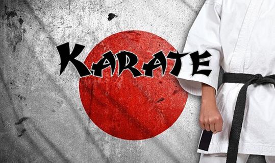 http://www.karatenomiti.com